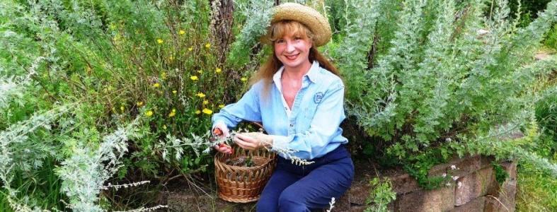 medicinal-qualities-botanical-absinthe
